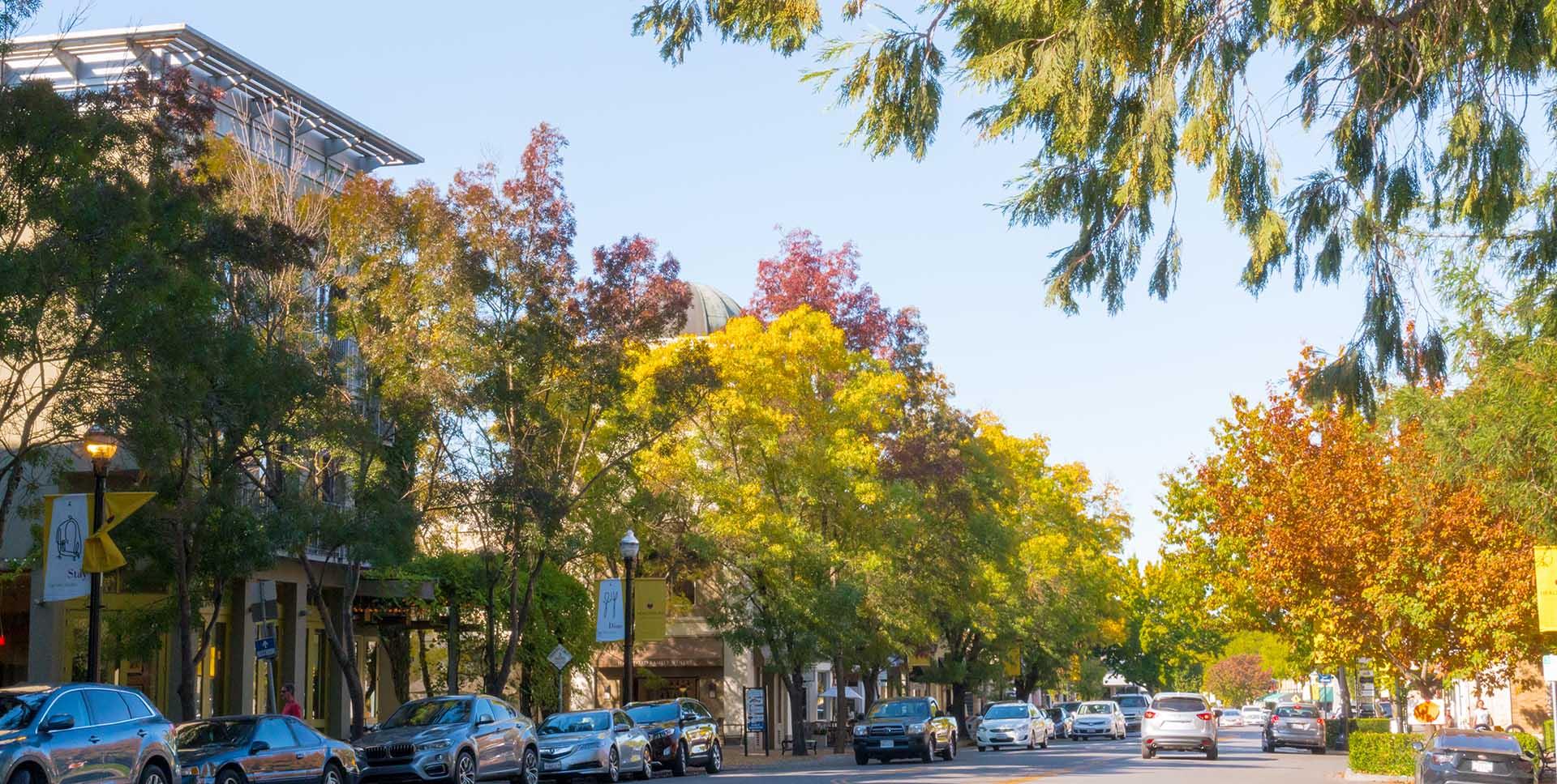 Healdsburg CA | SonomaCounty.com