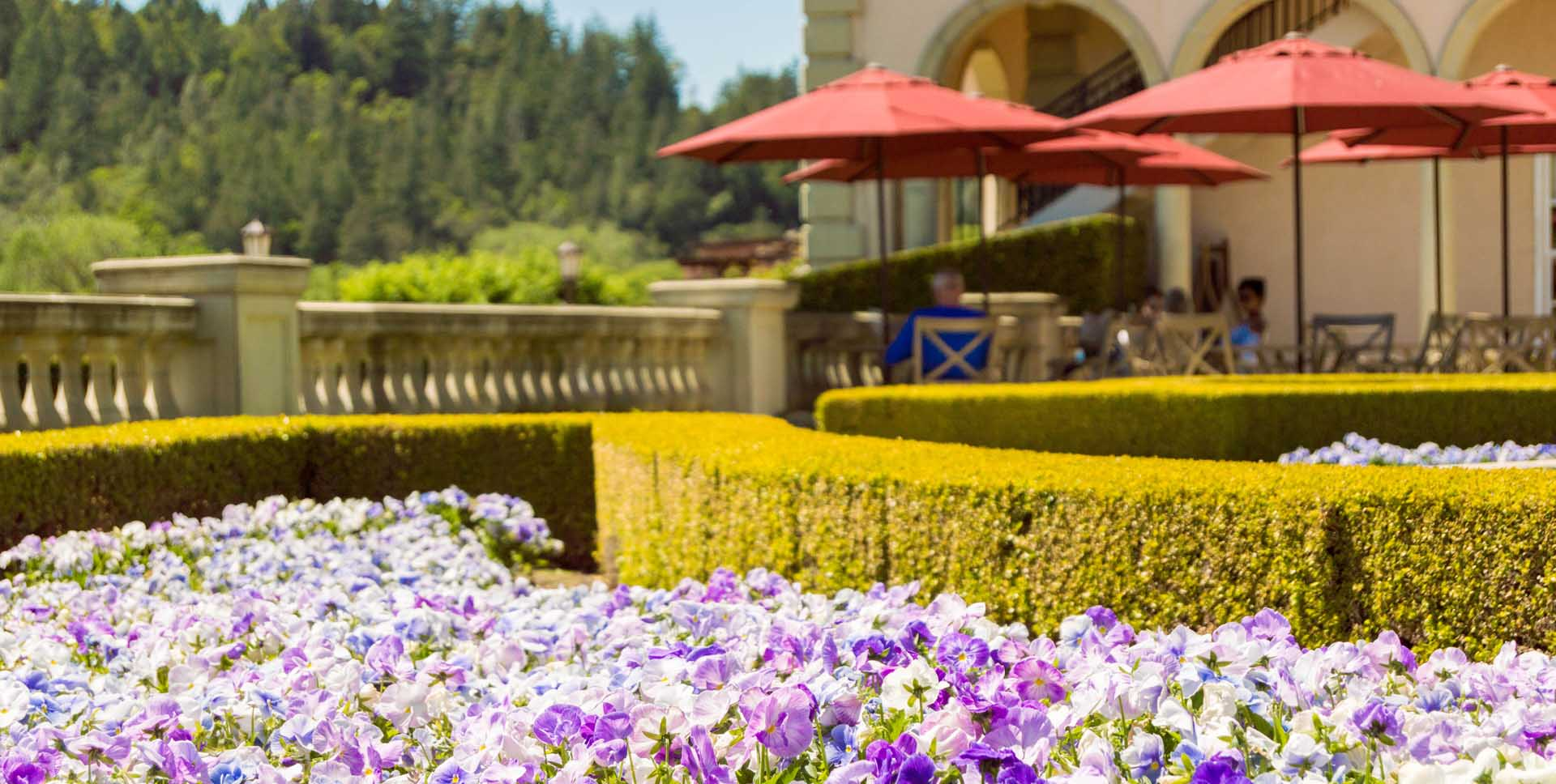 10 Sonoma Wineries with Gorgeous Gardens