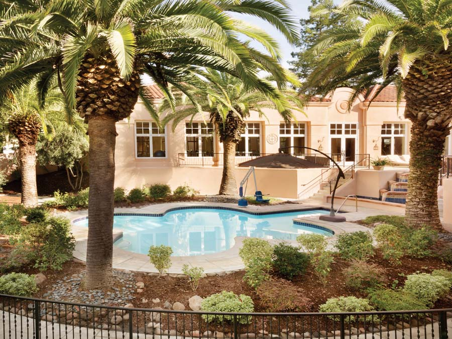 The pool is surrounded by palm trees