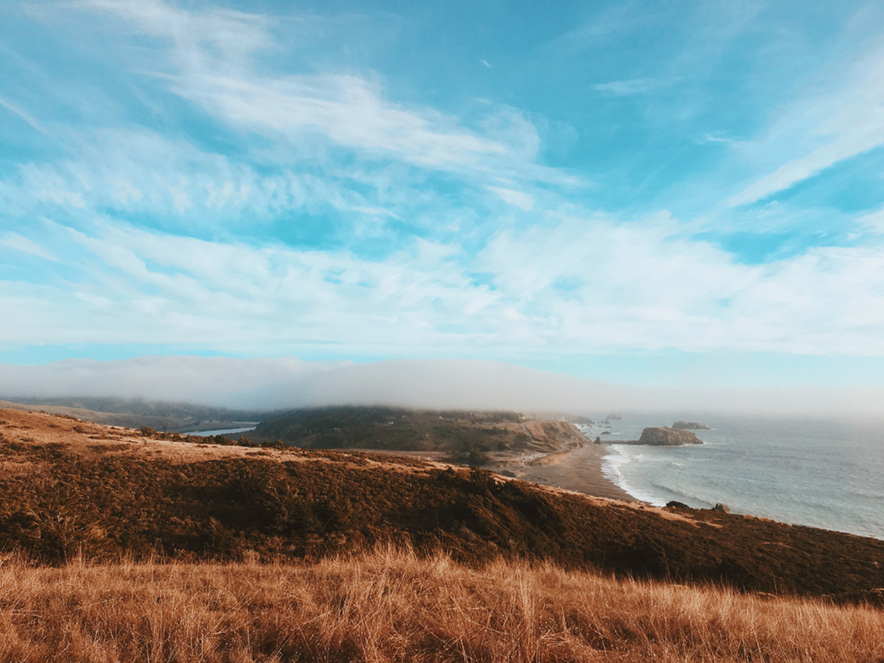 A swath of blue ocean in the horizon is visible behind a field of golden grasses at Jenner Headlands Preserve in Sonoma County