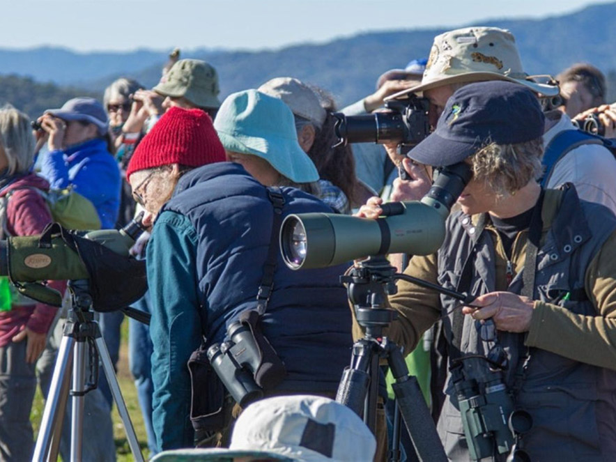 people watching birds through spotting scopes in Sonoma County