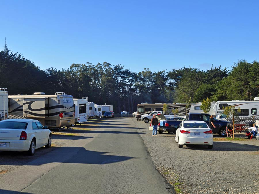 RVs are lined up for camping at Bodega Bay RV Park, Sonoma County