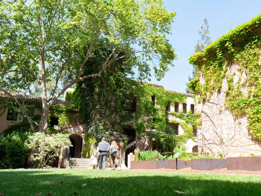 A couple walks under the shade of a large tree by the ivy-covered Fairmont Sonoma Mission Inn & Spa in Sonoma County