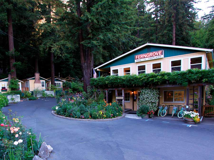 Sleep surrounded by redwoods at Fern Grove Cottages, Guerneville