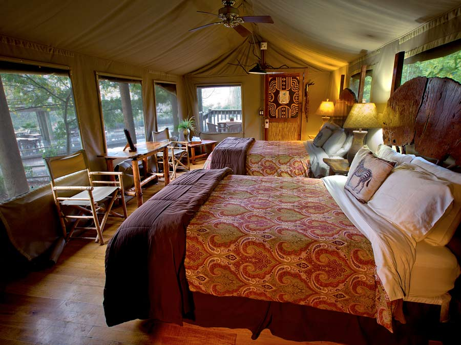 The inside of a luxury safari tent at Safari West in Sonoma County