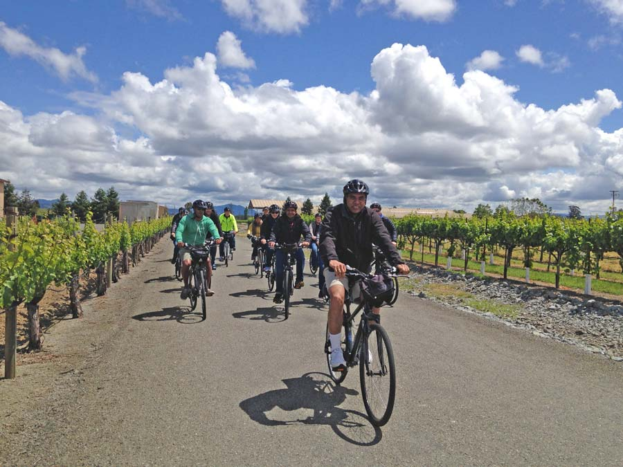 A group cycles next to vineyards with Ace It Bike Tours in Sonoma County