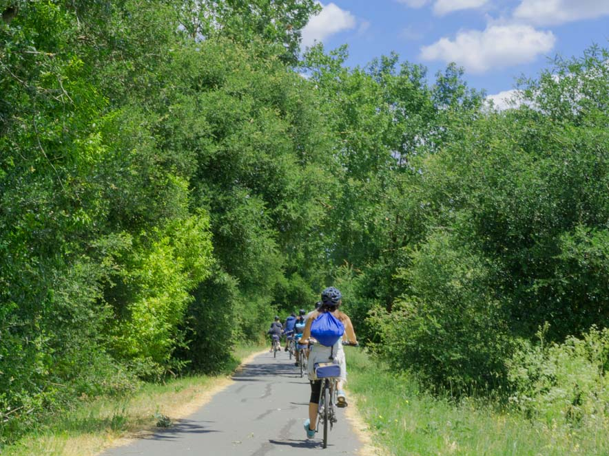 Cyclists enjoy the easy pace of the Santa Rosa Creek Trail, Santa Rosa