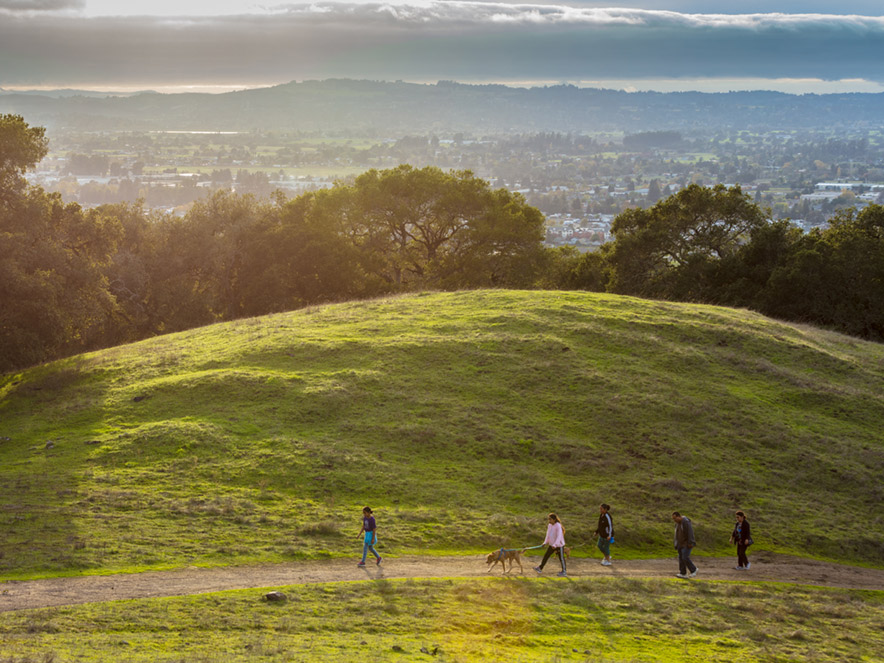 People walk their dog along the hill with the Santa Rosa skyline behind them at Taylor Mountain Regional Park and Open Space Preserve, Sonoma County