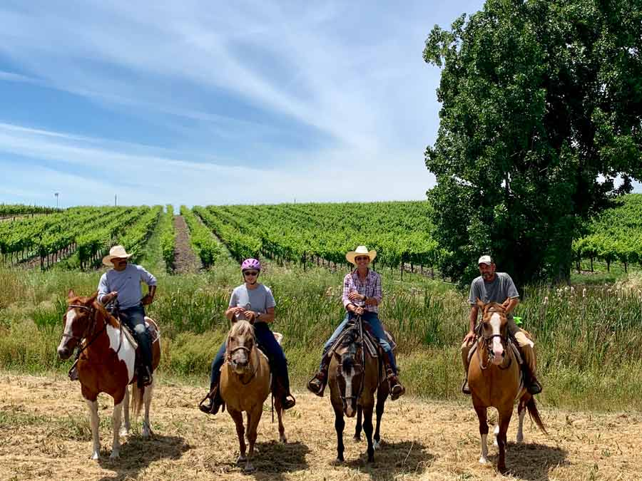 A group rides in front of vineyards in Sonoma Valley with Sonoma Valley Trail Rides, Sonoma County