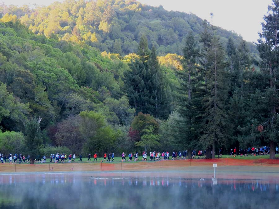 Runners enjoy the scenery next to the lake at Spring Lake Regional Park, Santa Rosa
