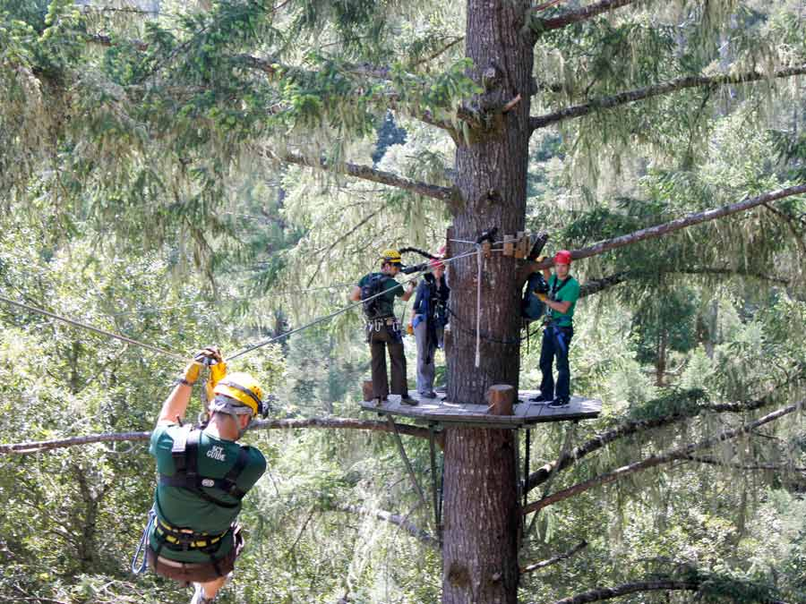 A man zippiness toward a group high up in redwood trees with Sonoma Canopy Tours, Occidental