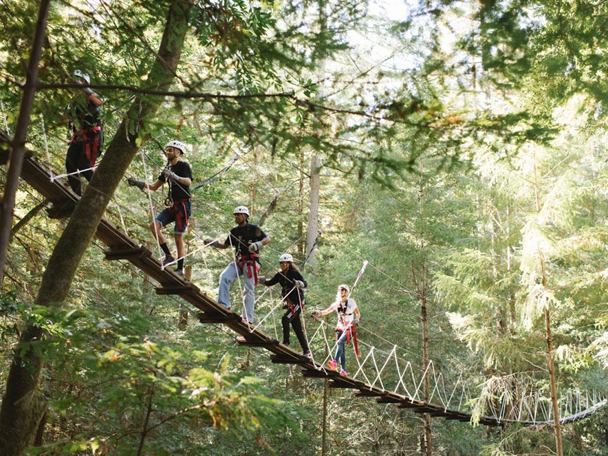 A group of people crosses a bridge through the canopy of Sonoma County redwood trees.