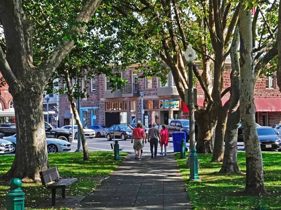 People walk through the tree-lined Sonoma Plaza