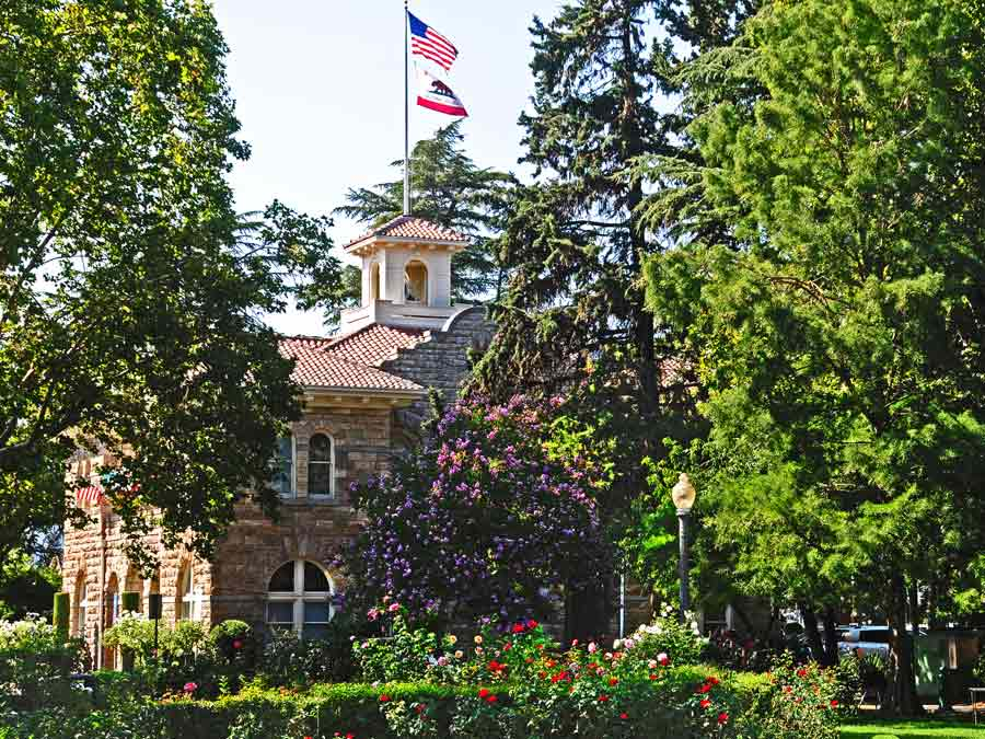 Sonoma's City Hall is surrounded by flowering trees in Sonoma County