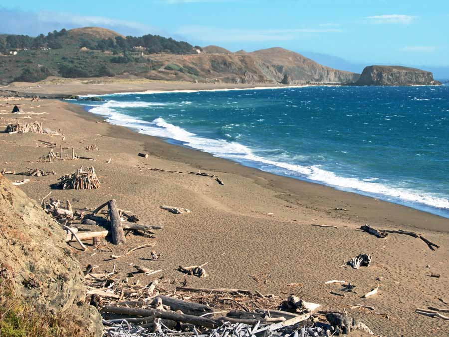 driftwood sculptures line the beach where the Russian River meets the Pacific Oceann