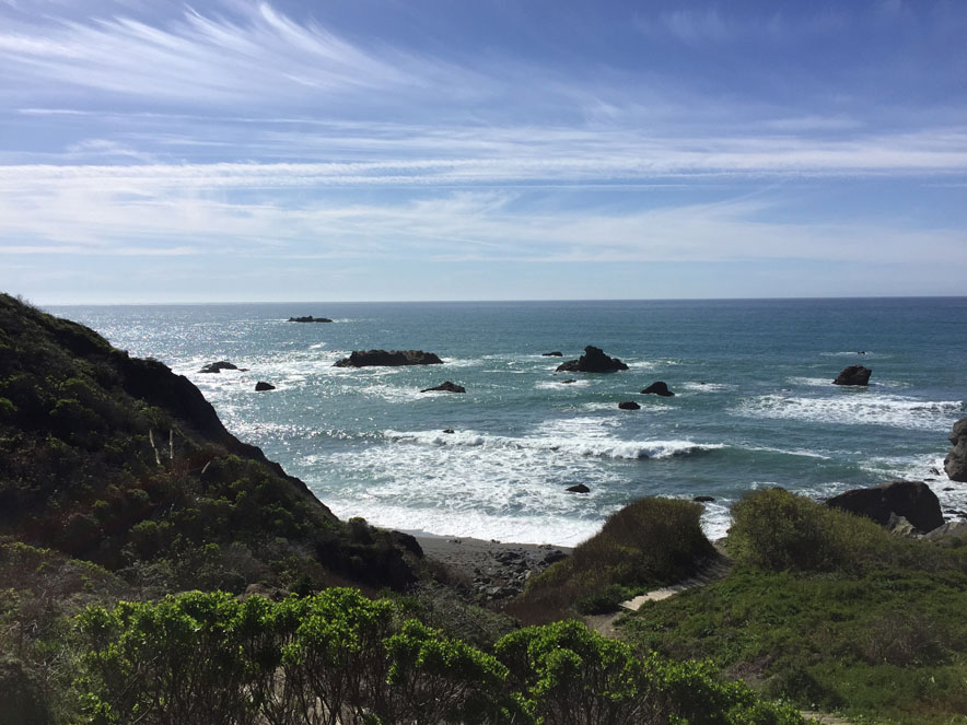 Image of Shell Beach on the Sonoma Coast