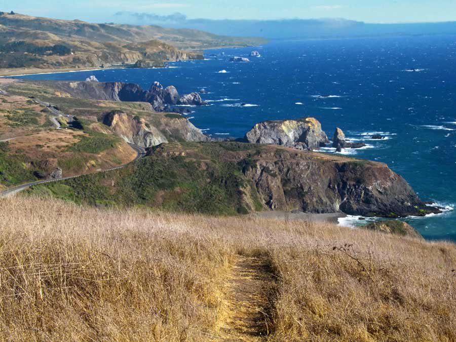 A path leads down to the ocean in Sonoma County