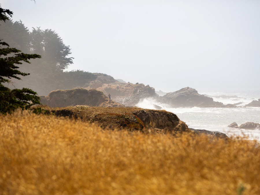 The Sonoma Coast is very rugged along the coastal access trails of The Sea Ranch, Sonoma County