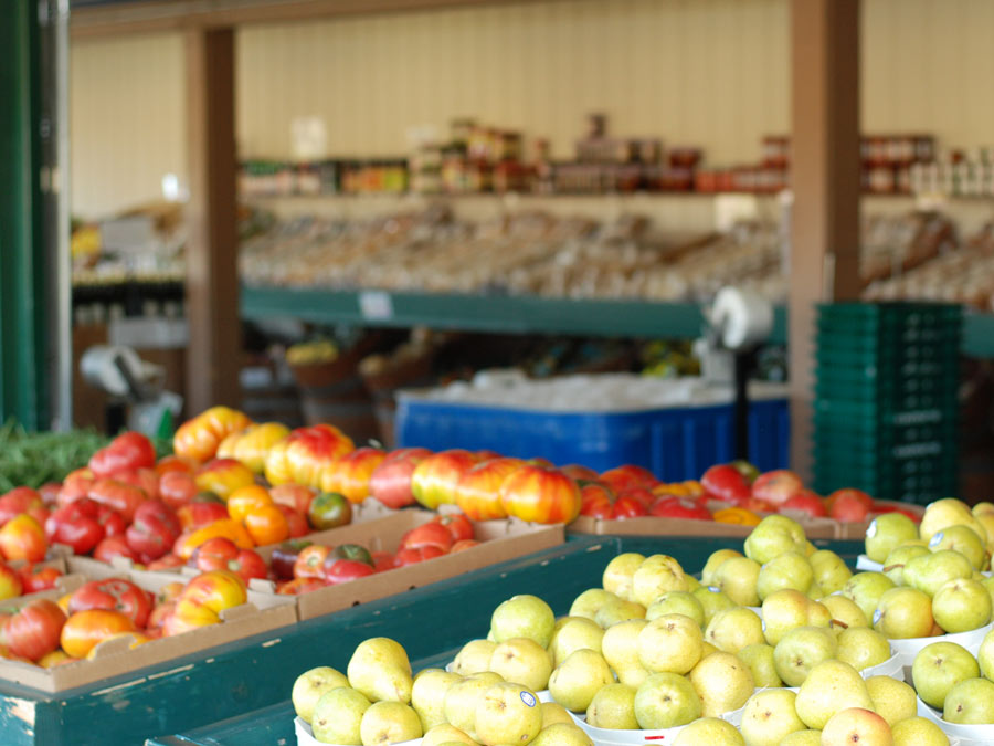 Fruit at Andy's Produce Market in Sebastopol