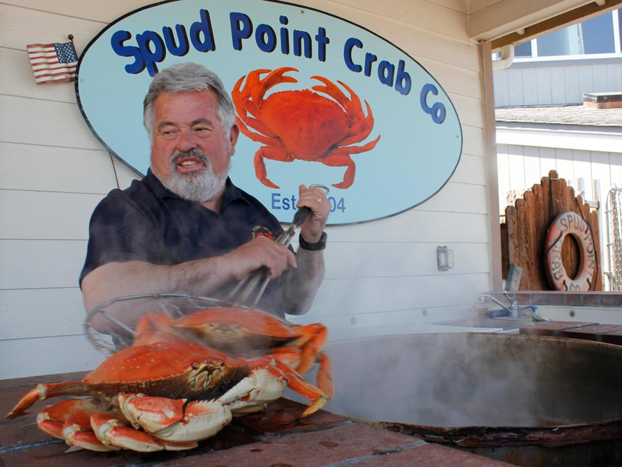 Crabs are cooked at Spud Point Crab Company, Bodega Bay