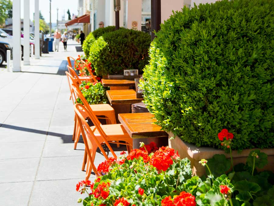 Sidewalk tables at Sunflower Caffe in Sonoma