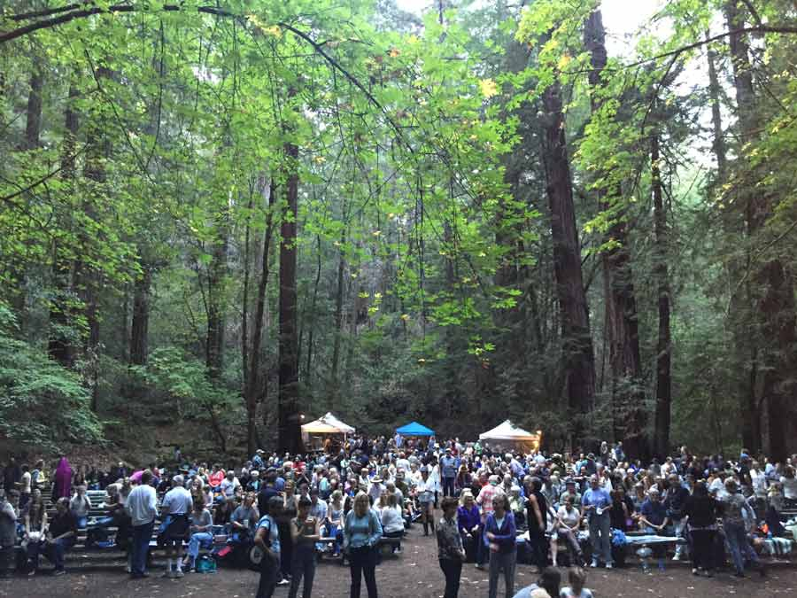 People enjoy live music at the Old Grove Festival, surrounded by redwoods at the historic Redwood Forest Theater in Armstrong Redwoods, Sonoma County