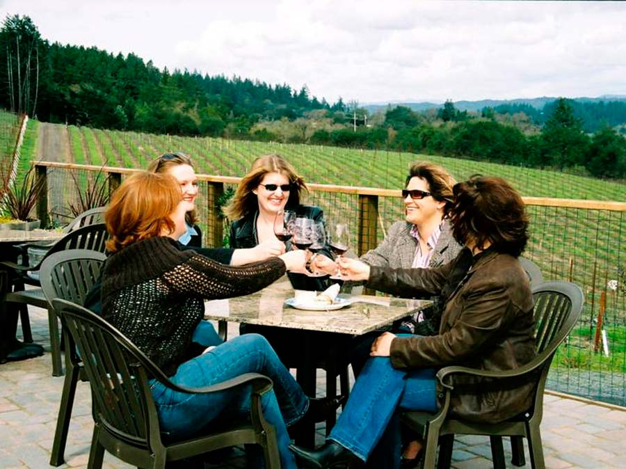 People enjoy wine around a table overlooking a vineyard at the Winter Wineland event, Sonoma County