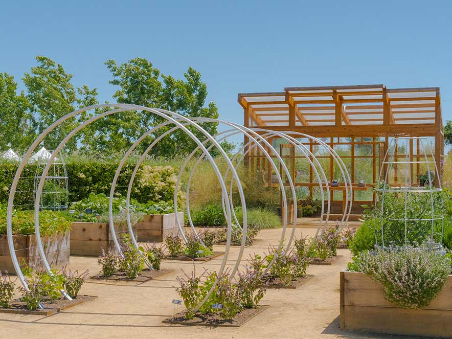 Landscape architects have created a variety of walk through gardens at Cornerstone Sonoma