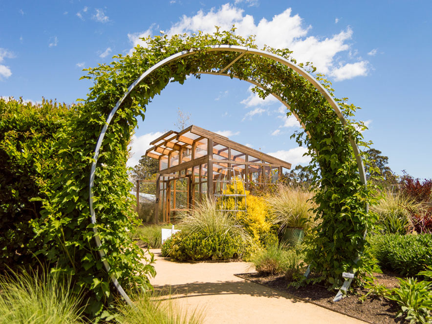 A vine-lined arch stands in the middle of Sunset Gardens in Cornerstone Sonoma