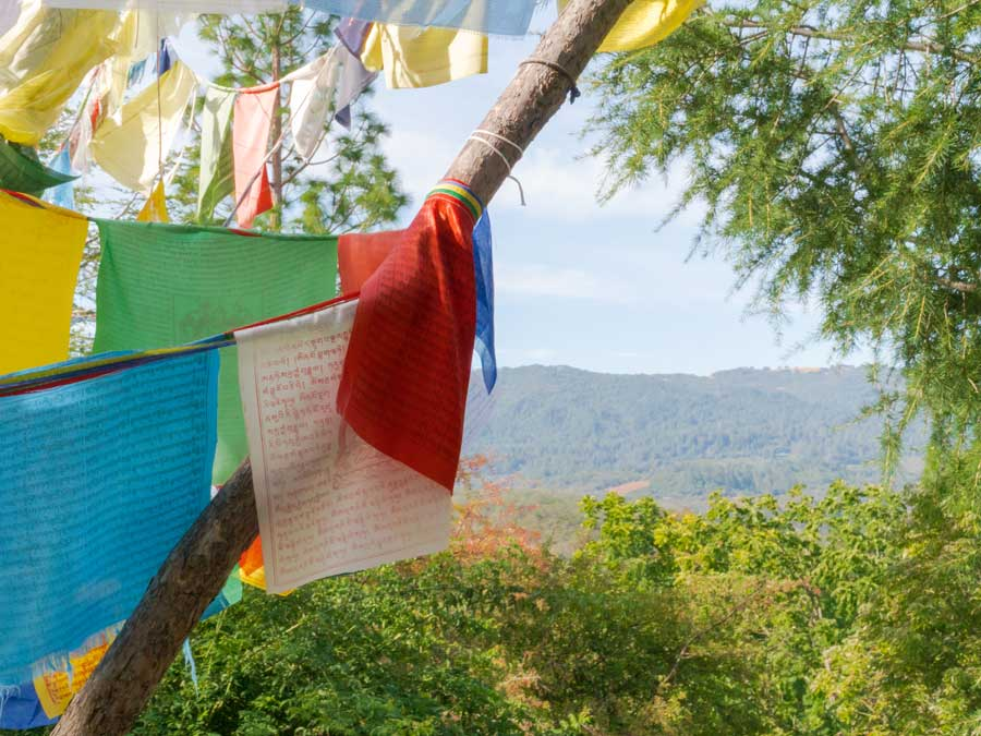 Prayer flags blow in the wind at the top of a peak