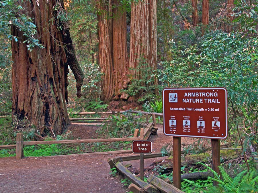 A sign for the Armstrong Nature Trail and the Icicle Tree in Armstrong Redwoods State Natural Reserve, Guerneville