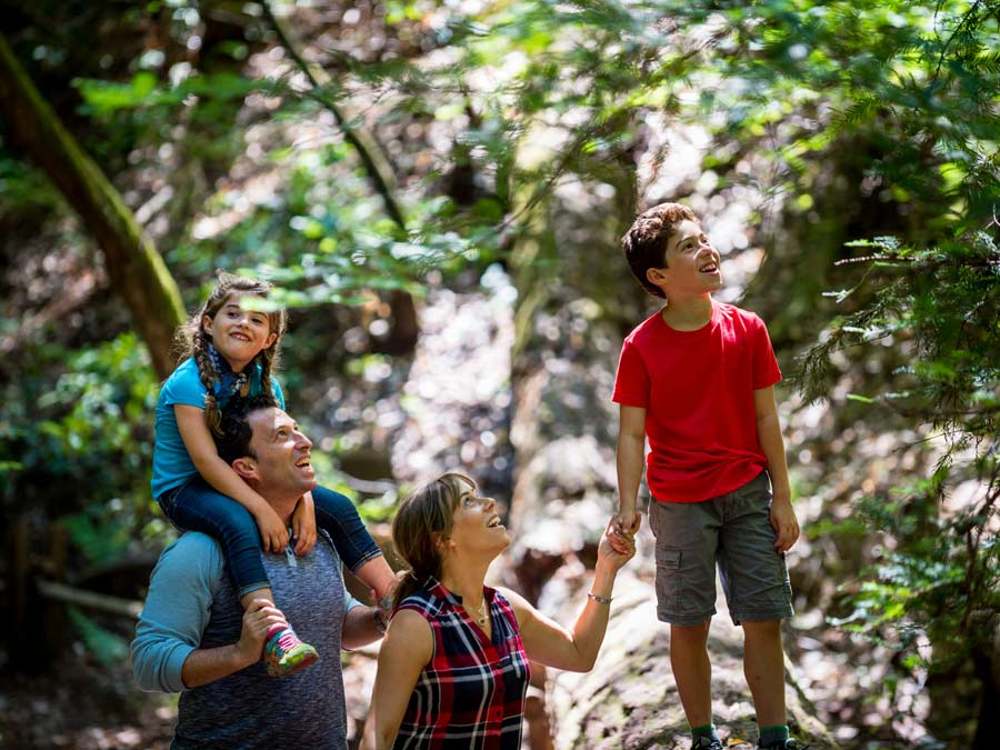 A family walking through Armstrong Redwoods State Natural Reserve in Guerneville