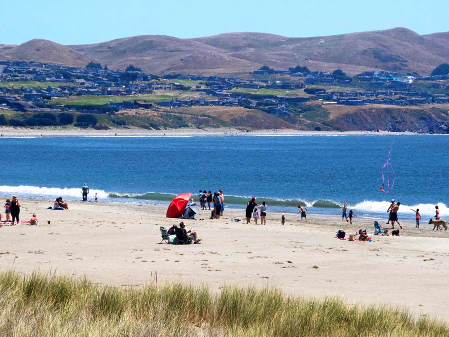 Families enjoy flying kites and sunbathing at Doran Regional Park, Bodega Bay