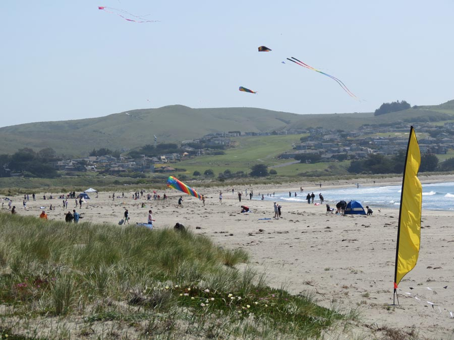 People sit on the beach watching kites fly in the sky at Doran Regional Park at the Castles & Kites event, Bodega Bay