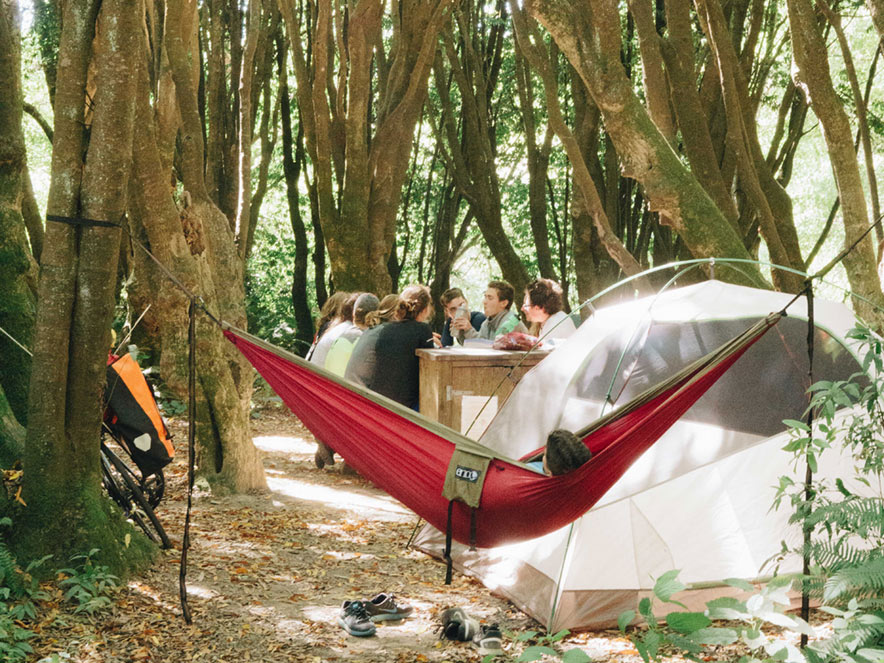 A tent and a hammock are set up under the trees at Gualala Point Regional Park, Sonoma County