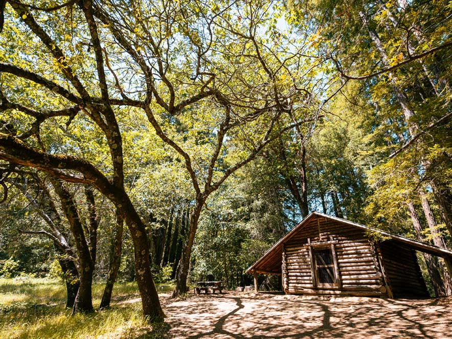 A log cabin stands in the middle of a forest at Jack London State Park