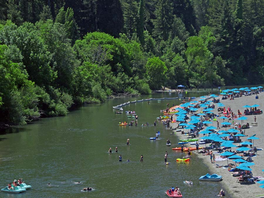 People floating and swimming in the Russian River at Johnson's Beach in Guerneville
