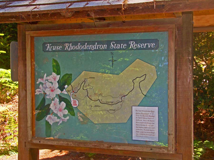A map on display of the park in Sonoma County