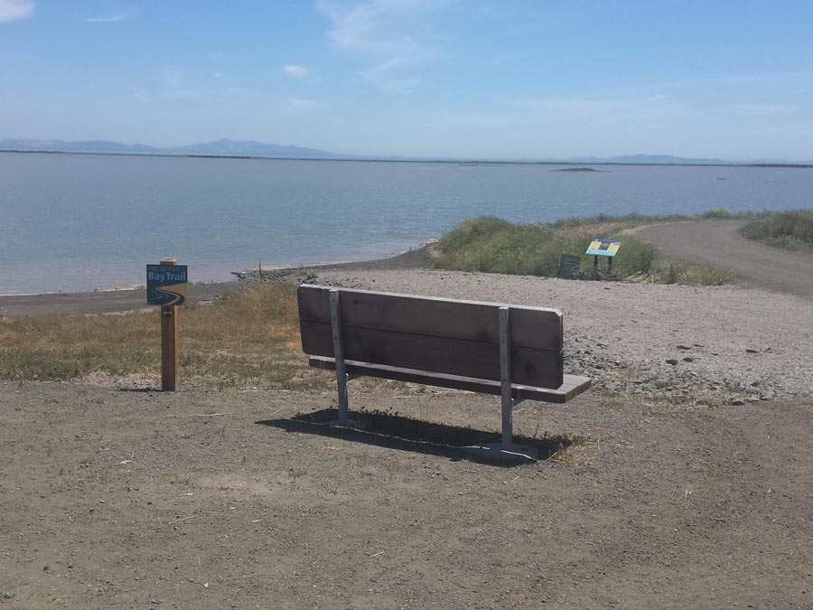 A bench looks out onto the bay in the preserve