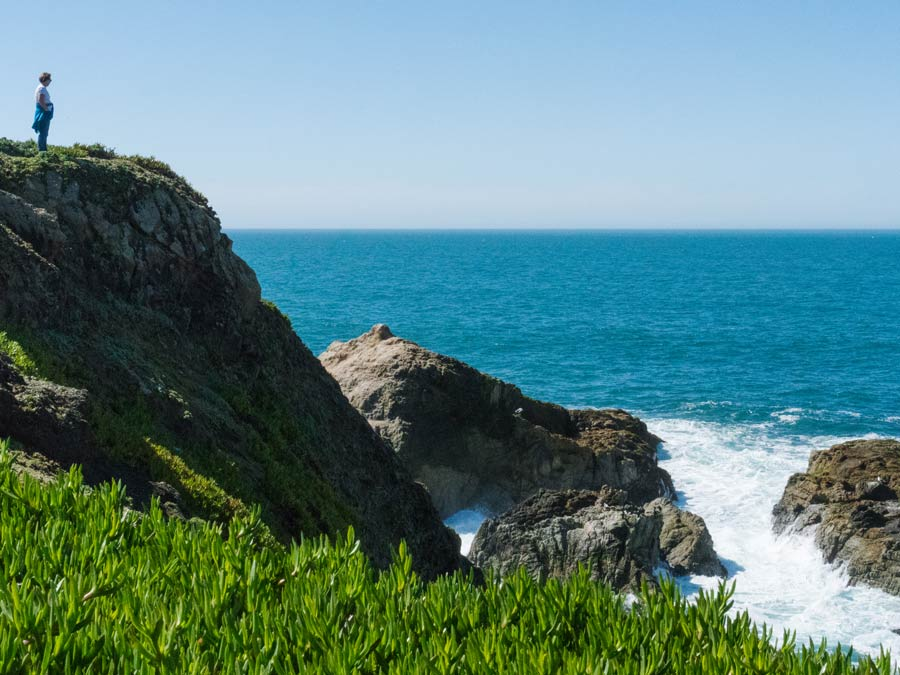 A person looks out at the ocean at Bodega Head along the Sonoma Coast