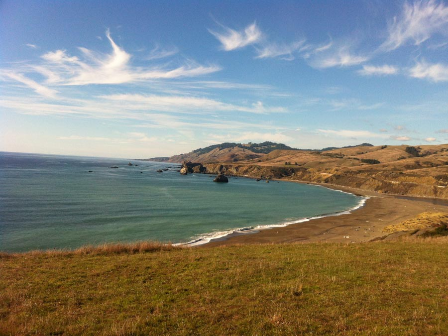 The wild Sonoma Coast at Goat Rock Beach, Sonoma Coast State Park