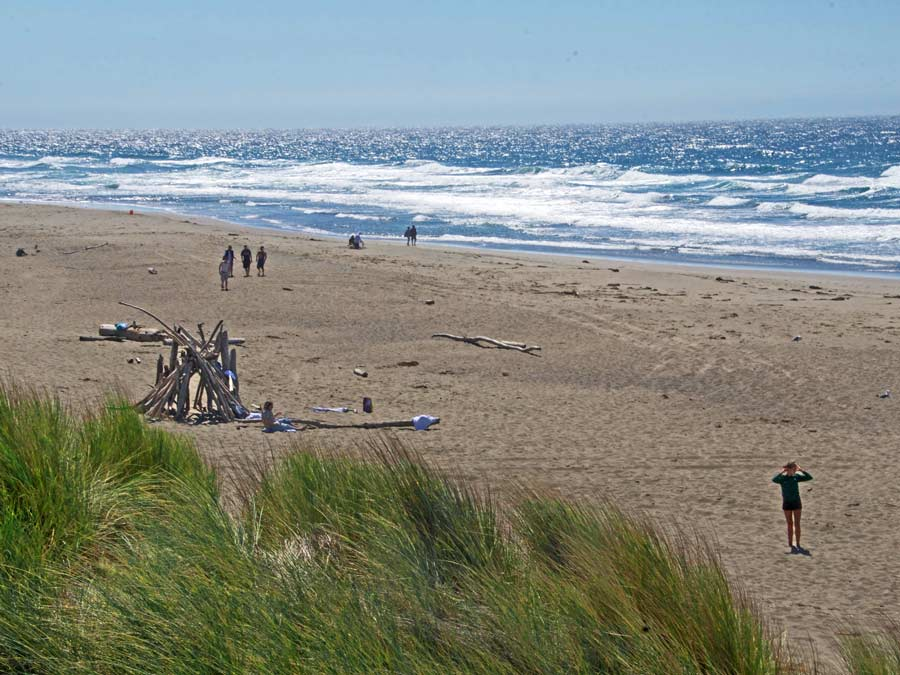 People enjoy the sun and build a driftwood fort along South Salmon Creek Beach, Sonoma County