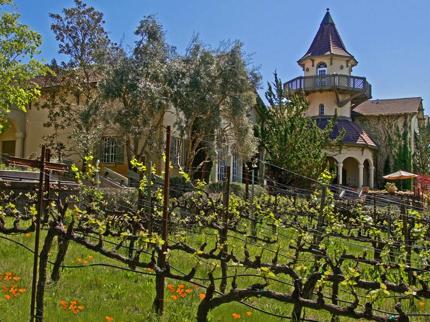 chateau St Jean Winery in Sonoma County