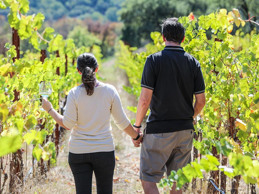 man and woman holding hands walking among vineyards
