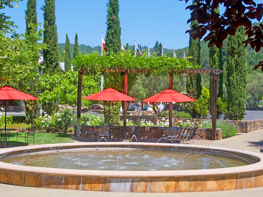 Red umbrellas stand out against a verdant background at Sebastiani Vineyards