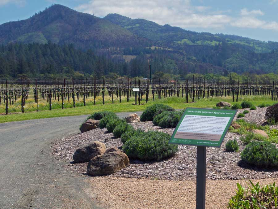 A sign for the free vineyard walking tours is posted at St. Francis Winery & Vineyards, Sonoma County