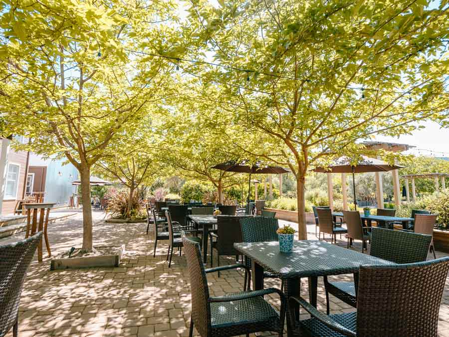 The shaded outdoor patio at Truett-Hurst Winery, Healdsburg