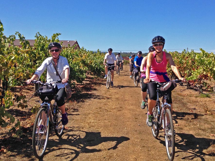 Cyclists ride in the vineyards with Ace It Bike Tours, Sonoma County