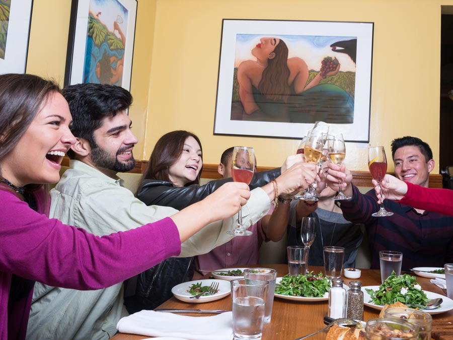 A group toasts to good food and wine along a tour with Gourmet Food and Wine Tours - Sonoma