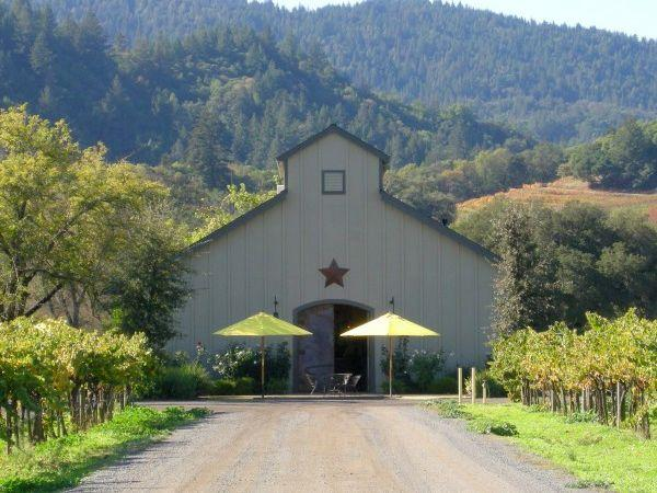amista vineyards dry creek valley sonoma county